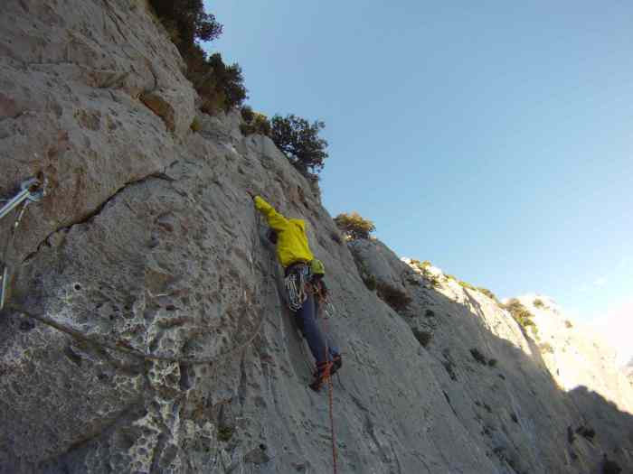 Leading the easy run out pitch on  Reve D'argent
